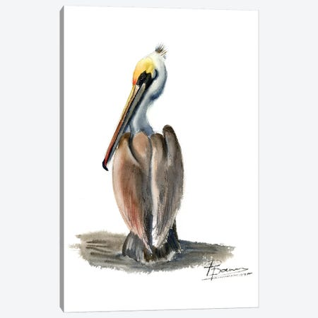 Beach Bird Canvas Print #OSF12} by Olga Shefranov Canvas Wall Art