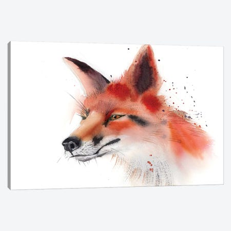 Fox Canvas Print #OSF144} by Olga Shefranov Canvas Wall Art