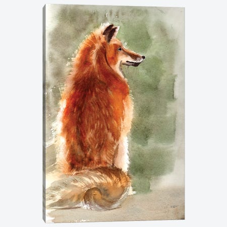 Fox Canvas Print #OSF145} by Olga Shefranov Canvas Art