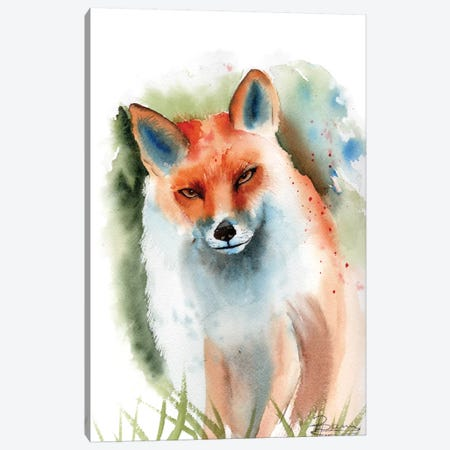 Fox II Canvas Print #OSF146} by Olga Shefranov Canvas Wall Art
