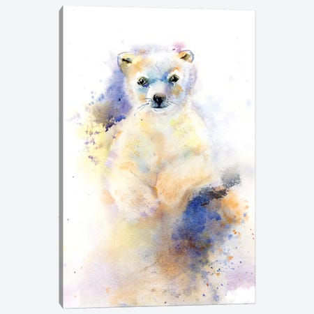 Bear Cub II Canvas Print #OSF17} by Olga Shefranov Art Print