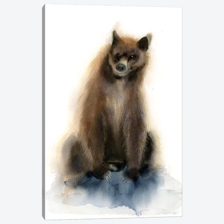 Bear II Canvas Print #OSF18} by Olga Shefranov Canvas Wall Art