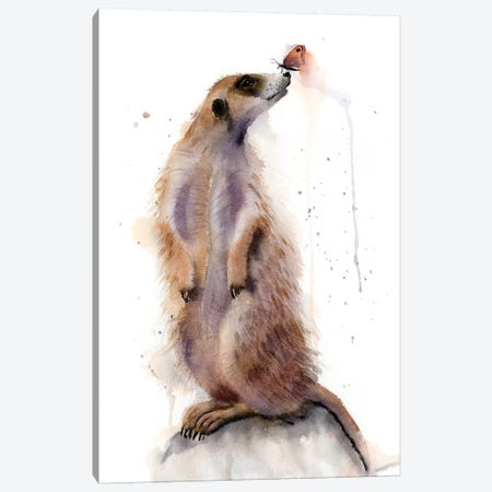 Meercat III Canvas Print #OSF199} by Olga Shefranov Canvas Artwork
