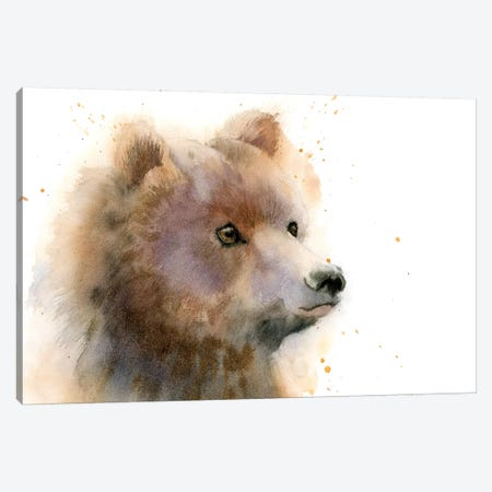 Bear II Canvas Print #OSF19} by Olga Shefranov Canvas Art