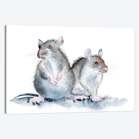 Mice Canvas Print #OSF200} by Olga Shefranov Canvas Art