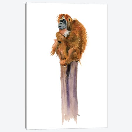 Monkey Canvas Print #OSF203} by Olga Shefranov Canvas Artwork