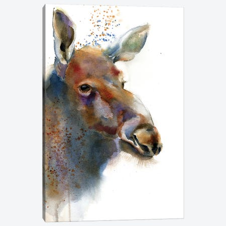 Moose 3-Piece Canvas #OSF204} by Olga Shefranov Art Print