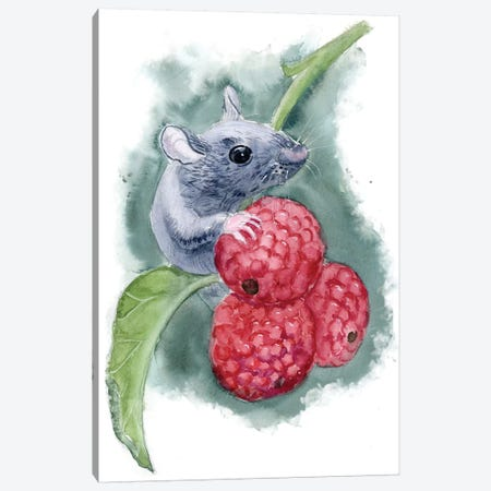 Mouse Canvas Print #OSF206} by Olga Shefranov Canvas Art Print