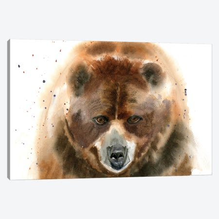 Bear IV Canvas Print #OSF22} by Olga Shefranov Canvas Art Print