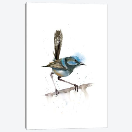Perched Bird III Canvas Print #OSF245} by Olga Shefranov Canvas Print