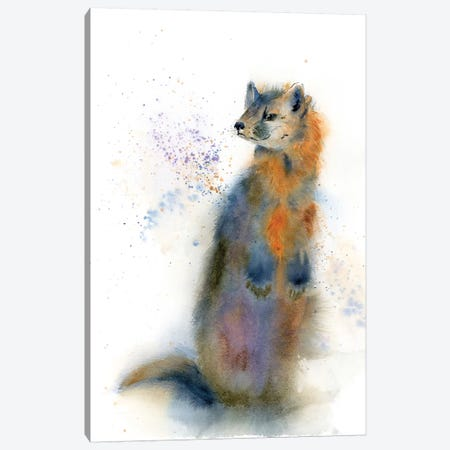 Percy Canvas Print #OSF250} by Olga Shefranov Art Print