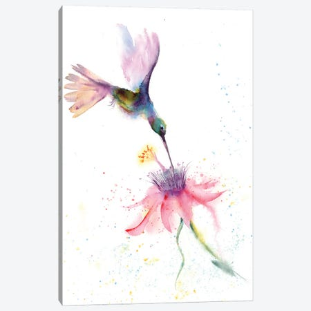Pink Flower Hummingbird Canvas Print #OSF261} by Olga Shefranov Canvas Artwork