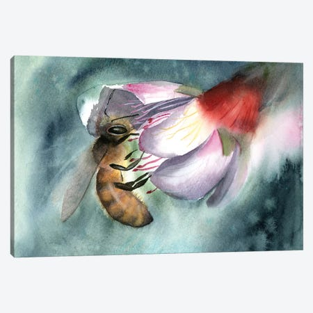 Bee III Canvas Print #OSF26} by Olga Shefranov Canvas Art