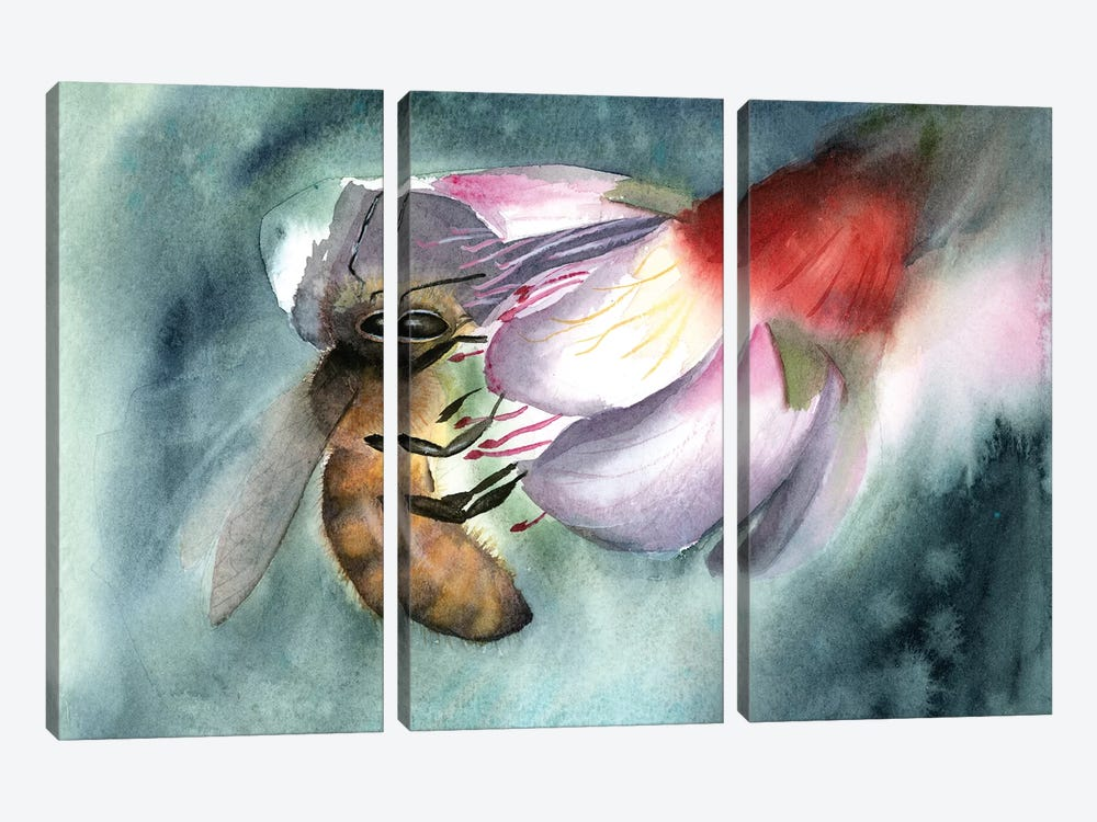 Bee III by Olga Shefranov 3-piece Canvas Art