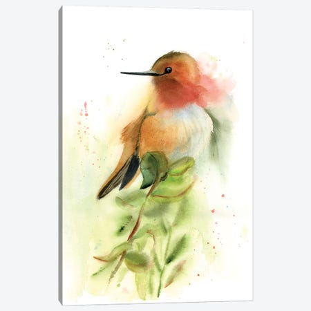 Pretty Bird Canvas Print #OSF274} by Olga Shefranov Canvas Artwork
