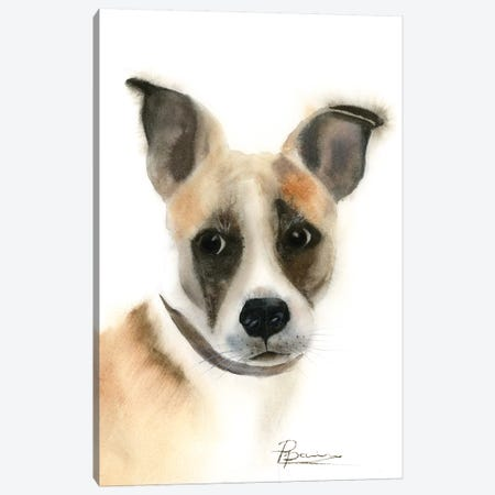 Pup Canvas Print #OSF278} by Olga Shefranov Canvas Print
