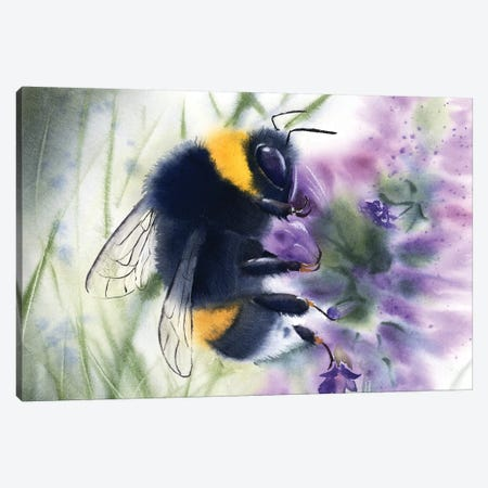 Bee IV Canvas Print #OSF27} by Olga Shefranov Canvas Wall Art