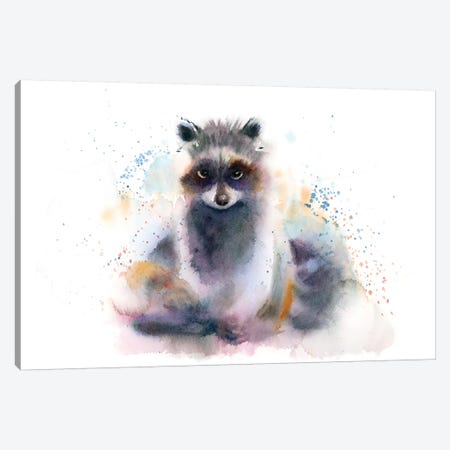 Raccoon Canvas Print #OSF285} by Olga Shefranov Canvas Art Print