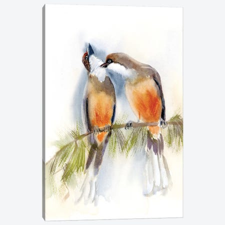 Birds on a Branch Canvas Print #OSF33} by Olga Shefranov Canvas Art