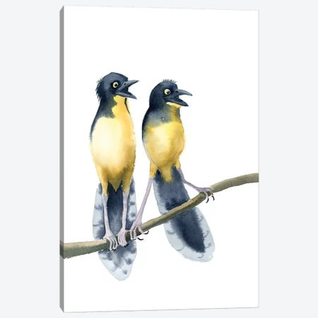 Whaaaa?! Canvas Print #OSF343} by Olga Shefranov Art Print