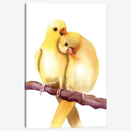 Yellow Parakeets Canvas Print #OSF363} by Olga Shefranov Art Print