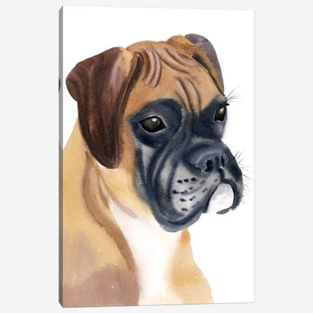Boxer Babe Canvas Print #OSF47} by Olga Shefranov Canvas Artwork