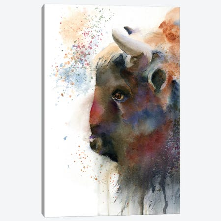 Buffalo Canvas Print #OSF52} by Olga Shefranov Canvas Wall Art
