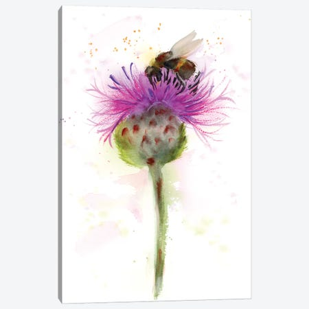 Bumble Bee Canvas Print #OSF53} by Olga Shefranov Canvas Art