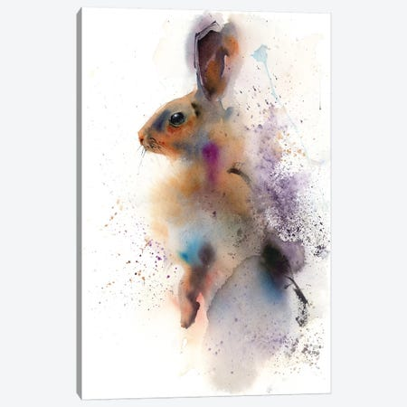 Bunny Canvas Print #OSF54} by Olga Shefranov Canvas Art Print