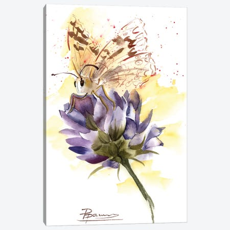 Butterfly Canvas Print #OSF58} by Olga Shefranov Canvas Art