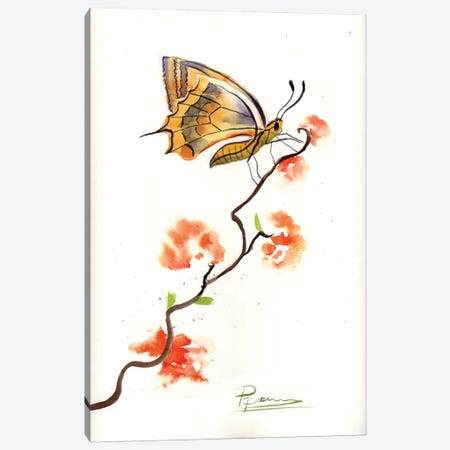 Butterfly III Canvas Print #OSF60} by Olga Shefranov Canvas Art Print