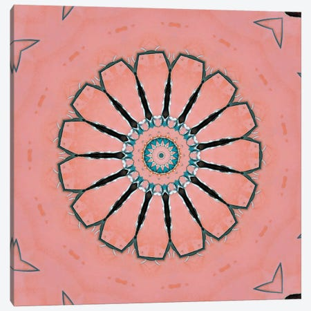 Samon Mandala II Canvas Print #OST100} by LuAnn Ostergaard Canvas Art Print