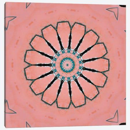 Samon Mandala II Canvas Print #OST100} by LuAnn Ostergaard Canvas Art Print
