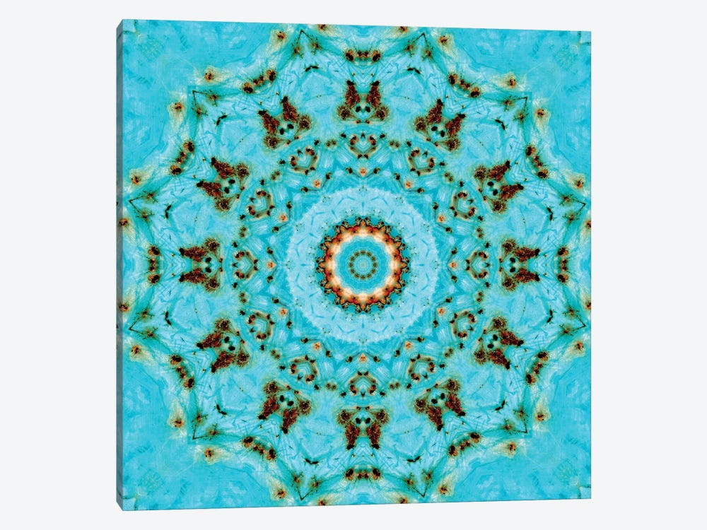Sorairu Mandala Iii Canvas Print By Luann Ostergaard Icanvas