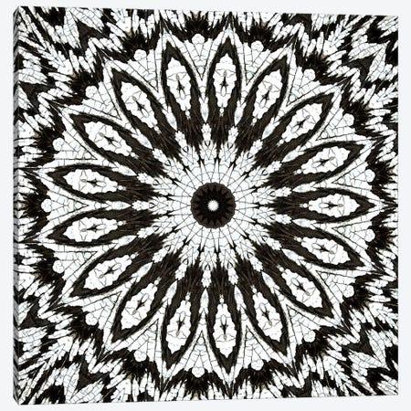Chikara Mandala I Canvas Print #OST15} by LuAnn Ostergaard Art Print