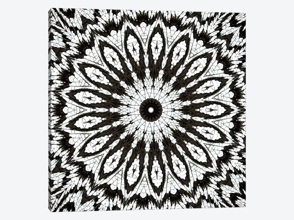 Chikara Mandala I by LuAnn Ostergaard 1-piece Canvas Artwork