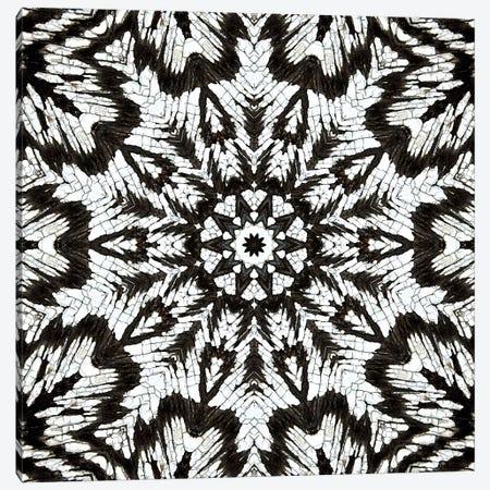 Chikara Mandala II Canvas Print #OST16} by LuAnn Ostergaard Art Print