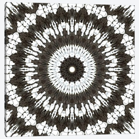 Chikara Mandala V Canvas Print #OST19} by LuAnn Ostergaard Canvas Art
