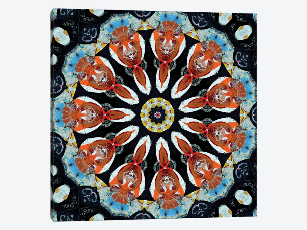 Akai Hi Mandala I by LuAnn Ostergaard 1-piece Canvas Artwork