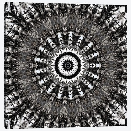 Chikara Mandala VII Canvas Print #OST21} by LuAnn Ostergaard Art Print
