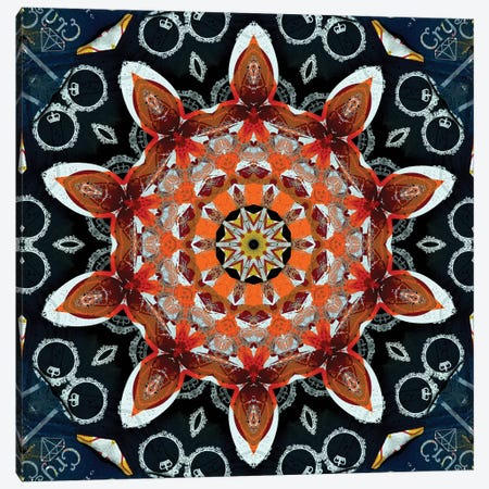 Akai Hi Mandala II Canvas Print #OST2} by LuAnn Ostergaard Canvas Print