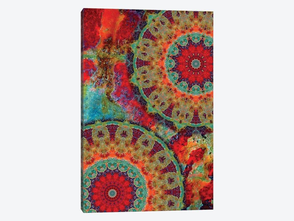 Flair Mandala I by LuAnn Ostergaard 1-piece Art Print