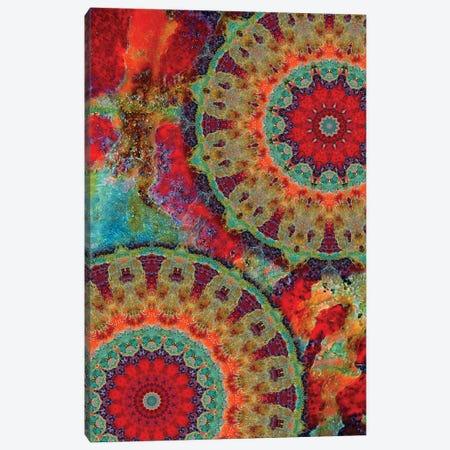 Flair Mandala I Canvas Print #OST34} by LuAnn Ostergaard Canvas Print