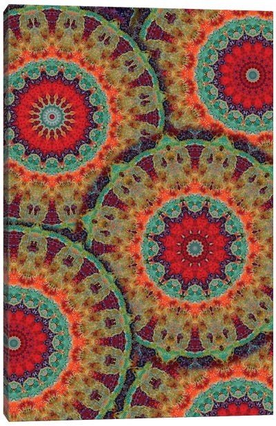 Flair Mandala II Canvas Art Print