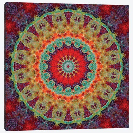 Flair Mandala III Canvas Print #OST36} by LuAnn Ostergaard Canvas Print