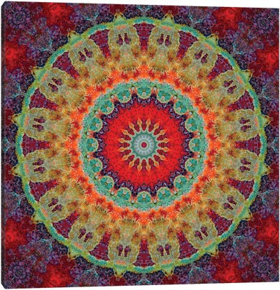 Flair Mandala III Canvas Art Print