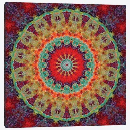 Flair Mandala III Canvas Print #OST36} by LuAnn Ostergaard Canvas Print