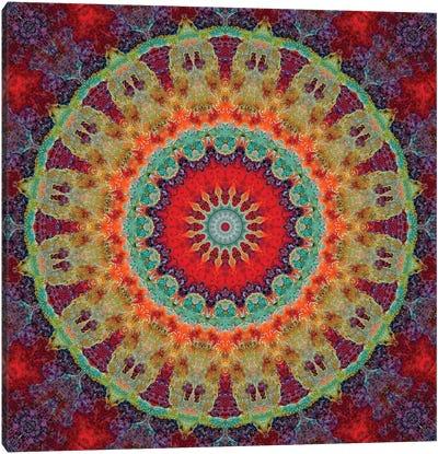 Flair Mandala III Canvas Art Print
