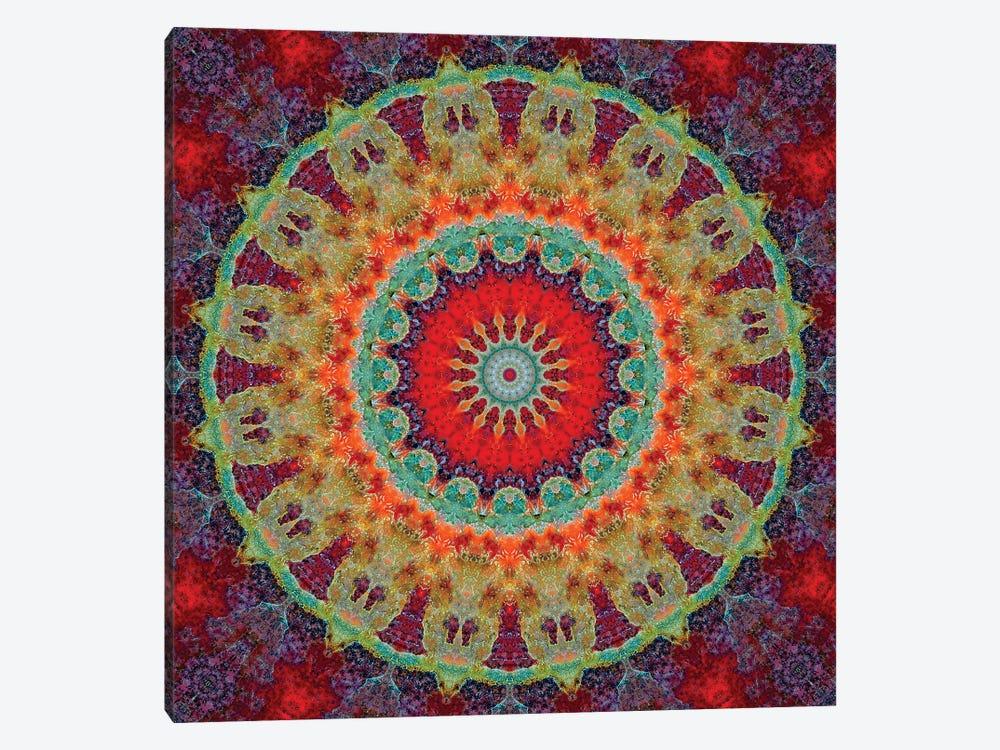 Flair Mandala Iii Canvas Art Print By Luann Ostergaard Icanvas
