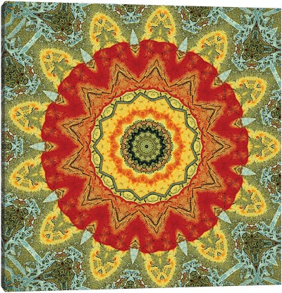 Indo Mandala I Canvas Art Print